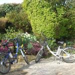 Convivialité avec nos touristes cyclistes