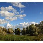 2013 - Lac du Der - Champagne Ardennes