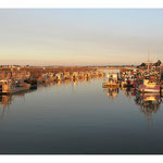 2016 - Port de Bourcefranc le Chapus - Charente Maritime