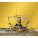 2014 - Splash