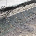 ähnlich KBE Grün S, Detailfoto Geogitter, Stahlgitterwinkel und Erosionsschutzmatte 07/2017