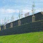 KBE Grün G: Frontansicht fertige Stützkonstruktion nach der Bepflanzung - beginnender Bewuchs
