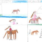 bd sur les chevaux