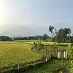 Surya Pongal morning