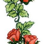 frau jenson, Illustration, Rosenbordüre