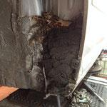 Geschätzte 2 Kilo kompostiertes Laub, das Ergebnis aus 17 Jahren Dauerbetrieb...