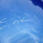 ... sogar die Unterschrift des Herrn Colani ist vorhanden...