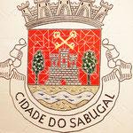 """""""Brasão Cidade do Sabugal"""" - 60x50 cm"""