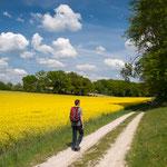 Herrliche Frühlingswanderung von Schrobenhausen nach Pfaffenhofen an der Ilm