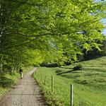 Frühlingswanderung bei Geitau im Leitzachtal