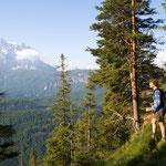 Wunderschöner Almpfad auf der Südseite der Ammergauer Alpen