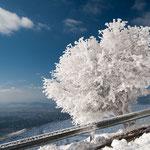 Nach einem zweitägigen Schneesturm auf dem Berg Pendeli bei Athen