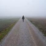 Nebel auf dem Weg von Fürstenfeldbruck nach Grafrath