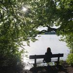 Rastbank am Weßlinger See