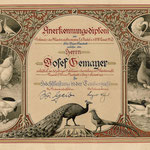 Urkunde von 1927 anlässlich der 30. Jubiläumsausstellung für die  Verdienste des Josef Gehmayer – Urgroßvater von Preisrichter-Obmann und Mitglied des N60 Fritz Benczak