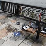 9/21台風15号の影響でテラスはゴミだらけ! アナライザーは電池切れで使えなかったhi