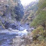 白丸ダムから鳩ノ巣駅の途中の渓流
