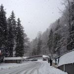 Weltcup Königssee