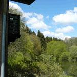 Silberfuchsfarm: Blick von der Sonnenterrasse
