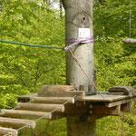 Praktisch: An jedem Baum gibt es eine Plattform zum Ausruhen