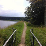Der Hirschler Teich gehört zu den vielen Bergbauteichen im Harz