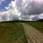Entlang der ehemaligen Grenze: Abfahrt auf dem Plattenweg nördlich vom Brocken