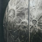 Infection (60 x 110 cm; charcoal on mdf; fixative) AVAILABLE