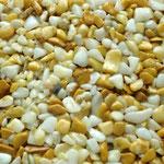 Steinteppich Gelb und weiß