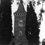 Les cyprès qui étaient à l'entrée de l'église