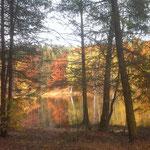 Sophienbad im Herbst