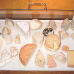 about 20 different raw milk cheeses
