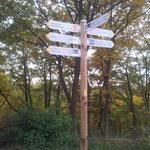 Wanderwege rund um die Geierlay