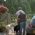 Crufts 2013 ROCHEBY GENTLEMAN GEORGE  1st Special Junior Dog