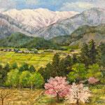 志村豊幸  安曇野の春  F10
