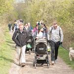 Buggy Walk Fundraiser