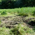 2番湿地回復予定地