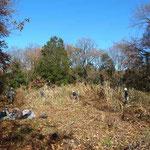 谷戸内でノイバラの繁茂を除去