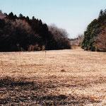 1997年谷戸奥風景