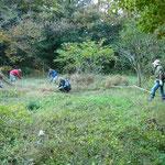 ⑦番湿地回復予定地作業中