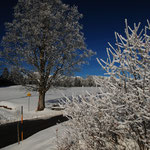 Foto: © stepro.jimdo.com