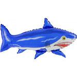 Haifisch (Helium)