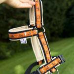 Borte: Dackelpower, orange / Gurtband: 25 mm, schwarz / Unterlegung: Air Mesh, beige