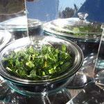 Cocinando con la nueva estufa solar