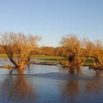 Überschwemmung nach starken Regenfällen