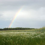Regenbogen Treplin