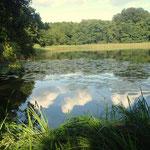 Kleiner Trepliner See,Blick zum Mühlenfließ