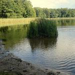 Kleiner Trepliner See