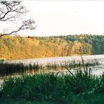 Badestelle See Treplin