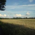 Radweg Blick Treplin