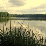 Kleiner Trepliner See Badestelle